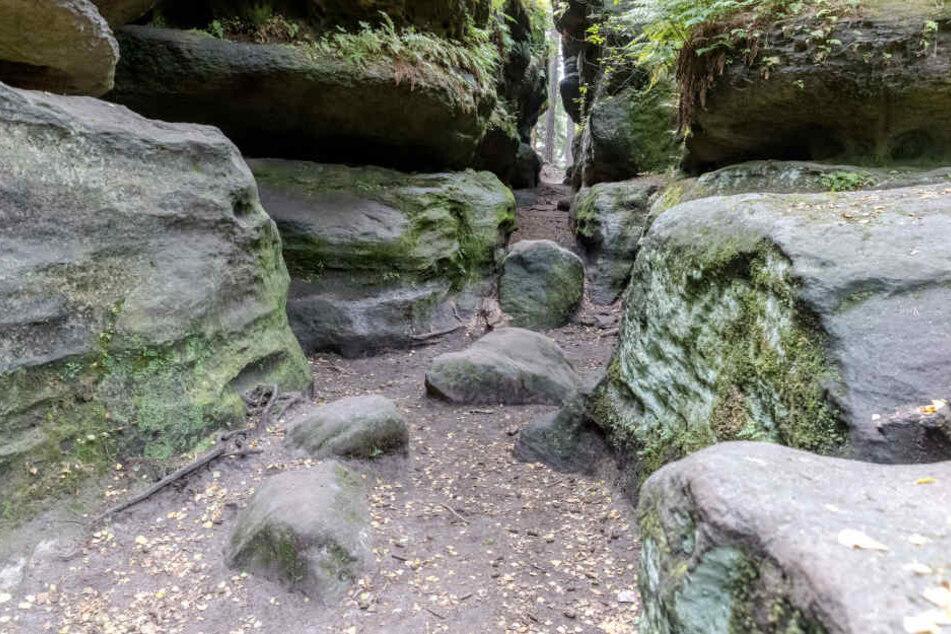 Das Felsenlabyrinth in Langenhennersdorf ist berühmt für seine Schluchten und engen Gänge. Hier verstarb der 73-Jährige.
