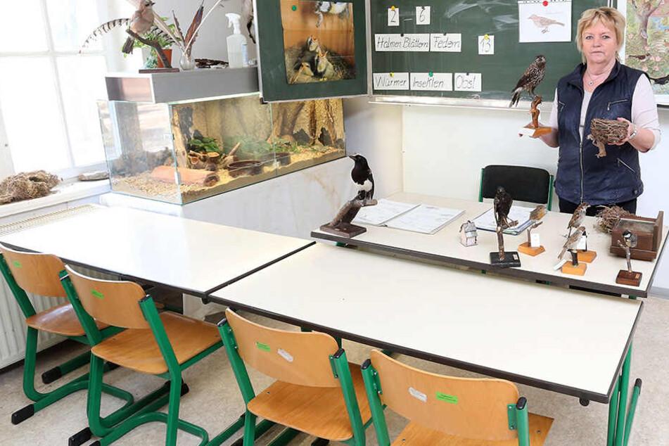 Die Unterrichtsräume der Tierparkschule ziehen um. Doch Lehrer fehlen leider immer noch.