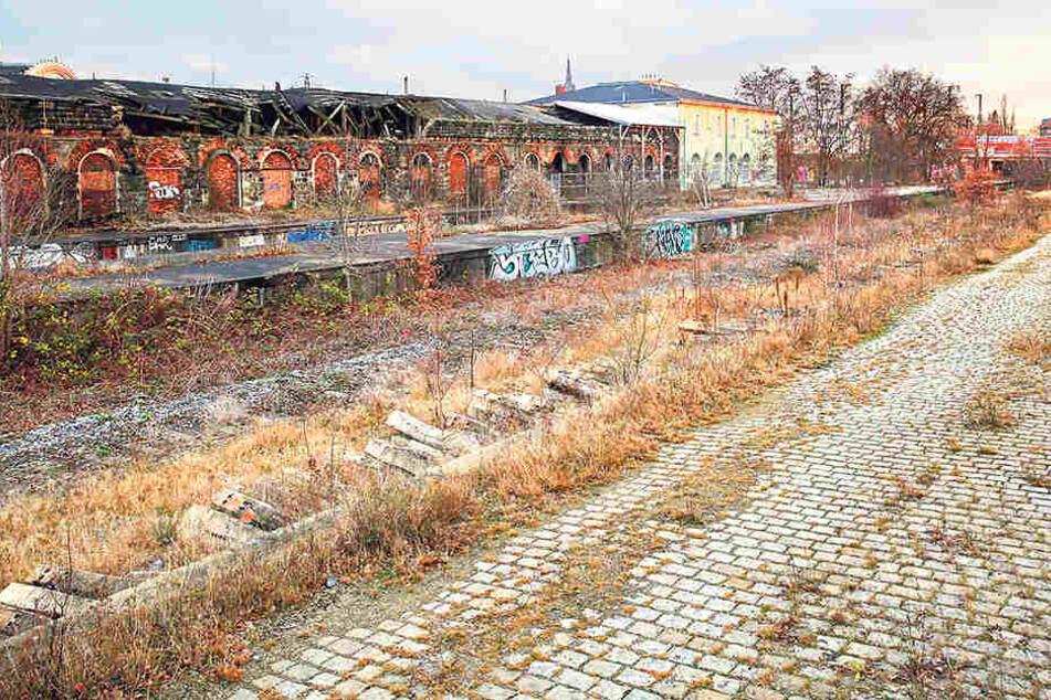 Noch immer will Globus am Alten  Leipziger Bahnhof (F.) in Pieschen bauen.