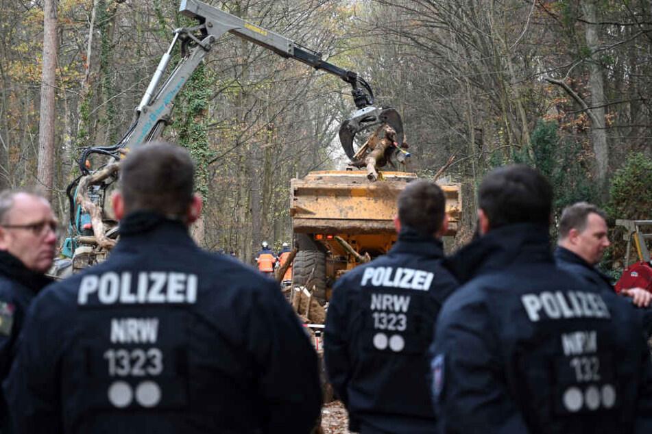 Die Polizei hatte den Hambacher Forst im September und Oktober geräumt.