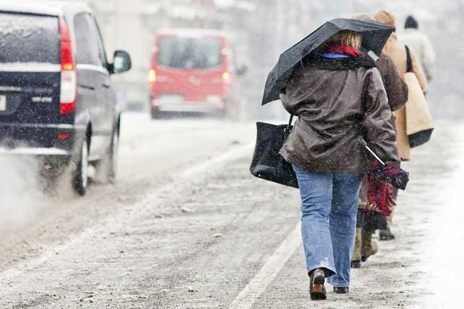 In den kommenden Tagen auf jeden Fall den Regenschirm einpacken. Ihr werdet ihn brauchen!
