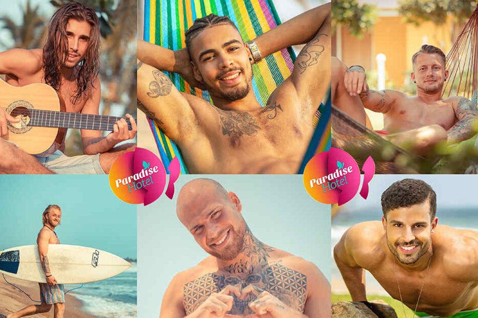 """Aktuell ist der Kamenzer (rechts oben) in der RTL-Show """"Paradise Hotel"""" zu sehen."""