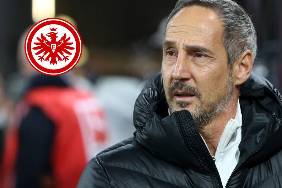 Keine Rechenspiele: Hütter geht mit seiner Eintracht voll auf Sieg