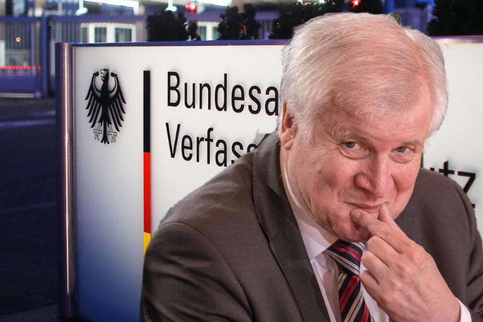 """Dass die AfD nun als Prüffall gilt, nannte Seehofer eine """"angemessene Reaktion"""". (Bildcollage)"""