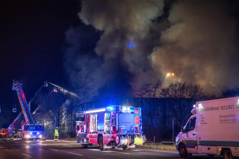 Sowohl eine absichtliche als auch eine fahrlässige Brandstiftung kämen als Ursache in Frage.