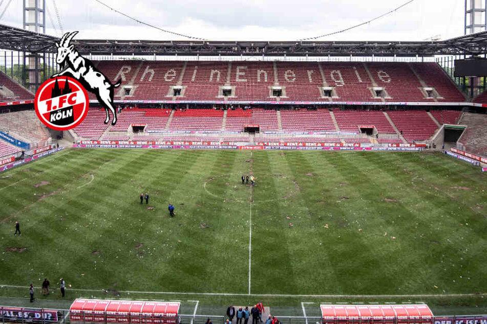 Heimspiele Fc Köln