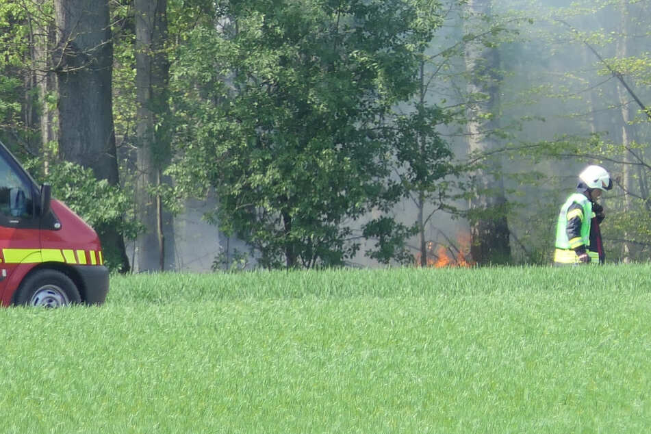 In Klinga im Landkreis Leipzig hat die Feuerwehr am Montagmittag einen Waldbrand bekämpft.