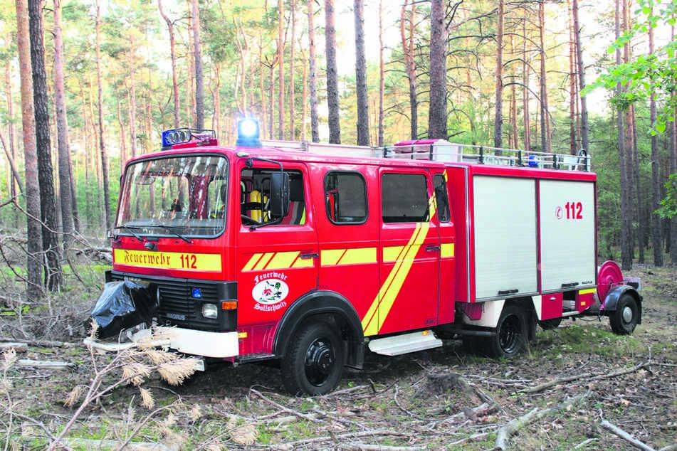 Schon wieder musste die Feuerwehr zu Waldbränden ausrücken.