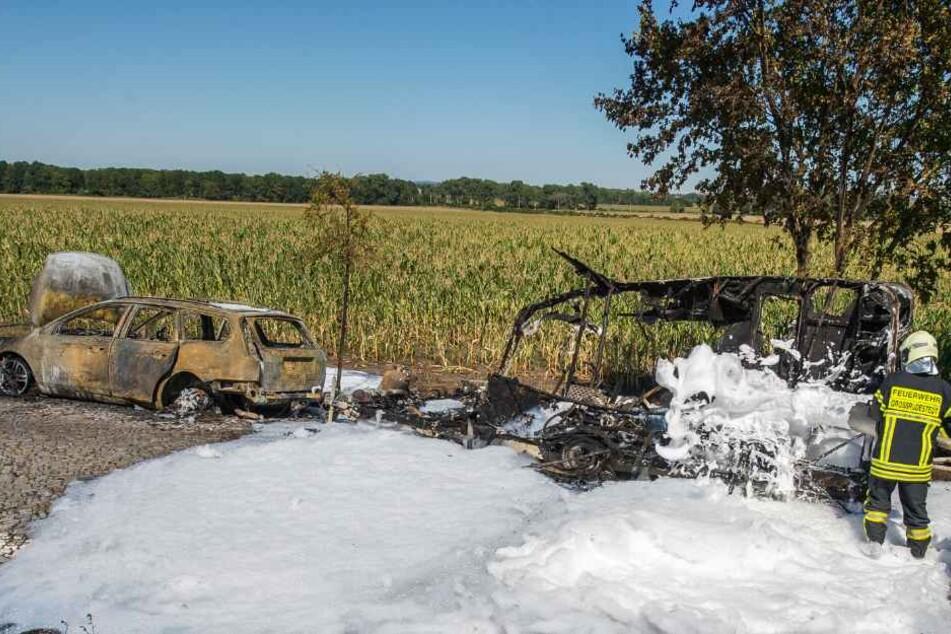 Die Feuerwehr verhinderte, dass das Feuer auf das Maisfeld übergriff.