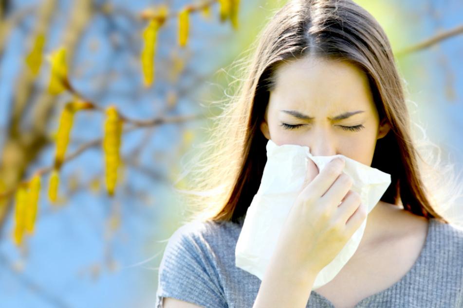 Allergiker aufgepasst! Warum dieses Wochenende für Euch besonders hart wird