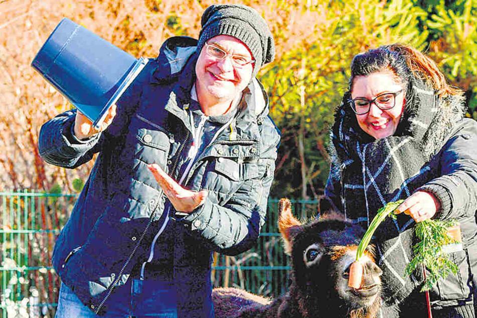 Steffen Lukas (48) und Claudia Switala (30) brachten Paten-Minieseldame Amy ein großen Eimer Möhen vorbei.