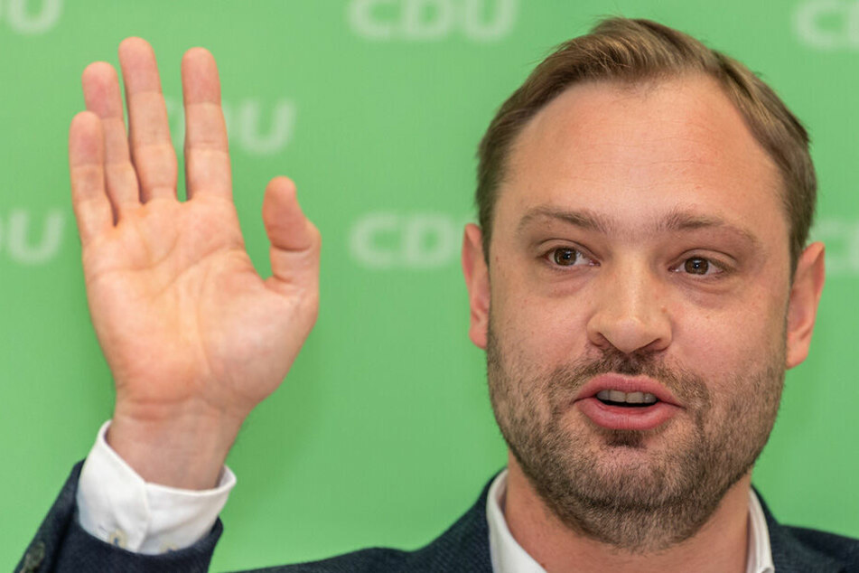 CDU-General will 50 Millionen Bäume in Sachsen pflanzen