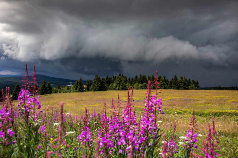 Am Sonntagnachmittag ist ein heftiges Gewitter über das Erzgebirge gezpgen.
