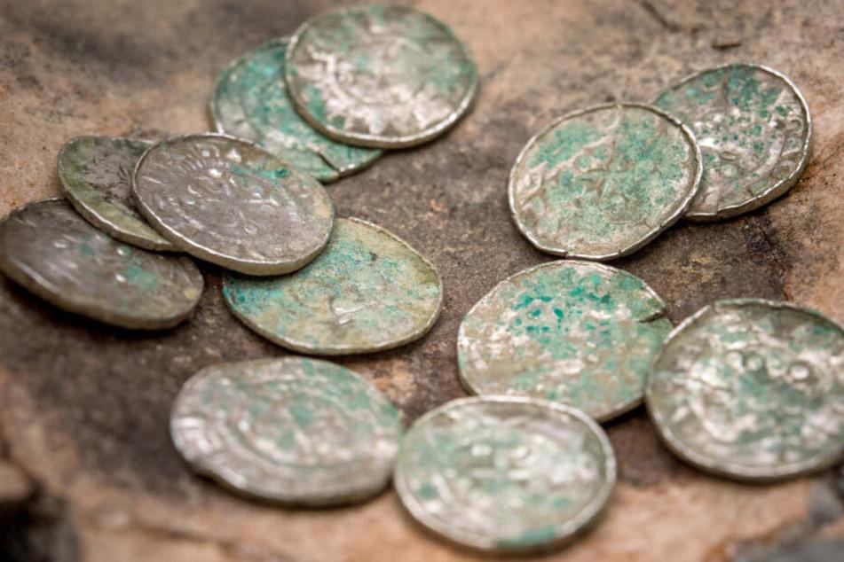 Schatzsucher finden über 9000 Münzen, doch die dürfen sie nicht behalten!