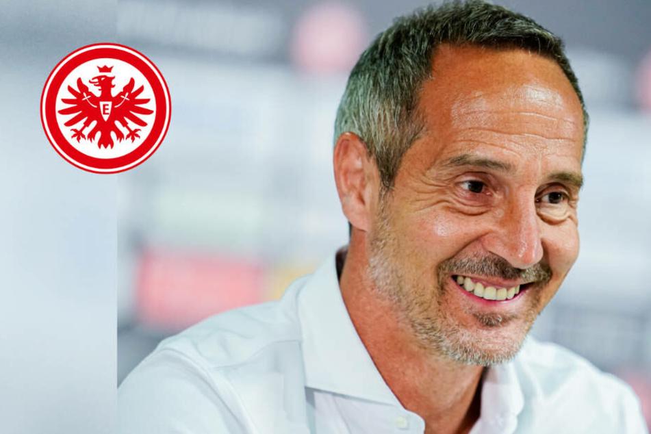 """Eintracht: Fitte Neuzugänge und ein großer Gewinner! Adi Hütter """"sehr zufrieden"""" mit Trainingslager"""