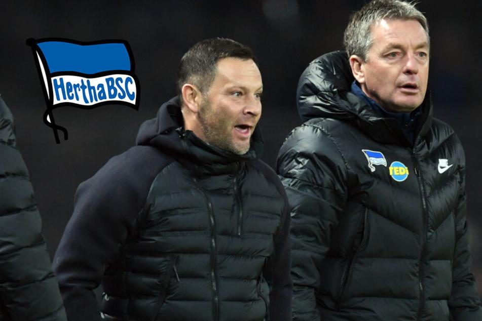 Widmayer-Transfer bei Hertha: Der wichtigste Mann verlässt das Schiff! Was nun?