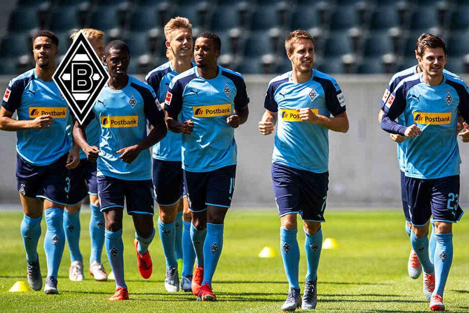 TAG24-Bundesliga-Analyse: Borussia Mönchengladbach peilt die Königsklasse an!