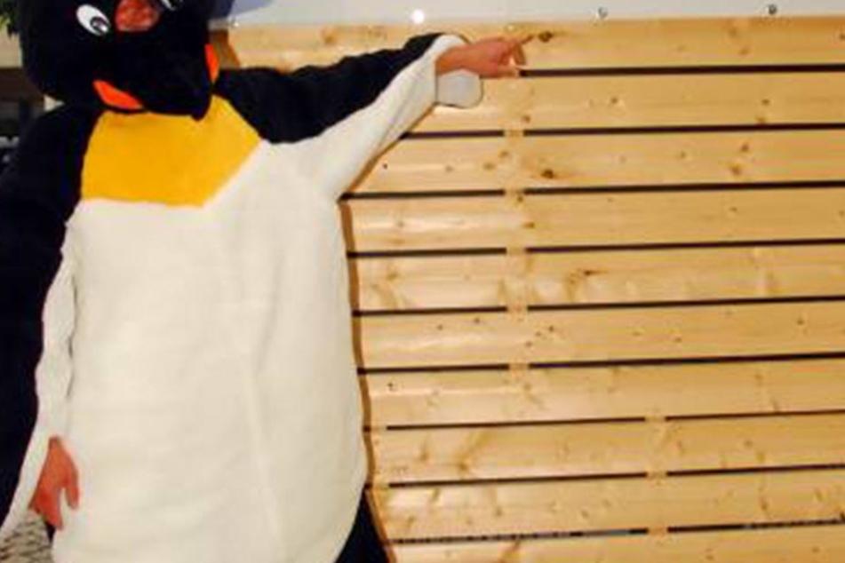 In einem Pinguinkostüm trieb der Ladendieb sein Unwesen.