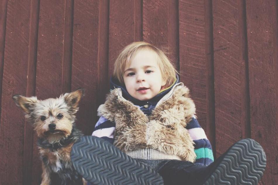 Ticken gleich: Hunde und Menschenkinder.