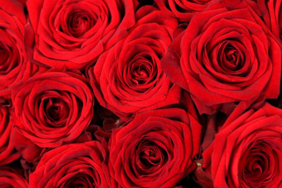 Ein Strauß Blumen sagt mehr als tausend Worte. Doch immer öfter greift der Deutsche zum Billig-Bouquet.