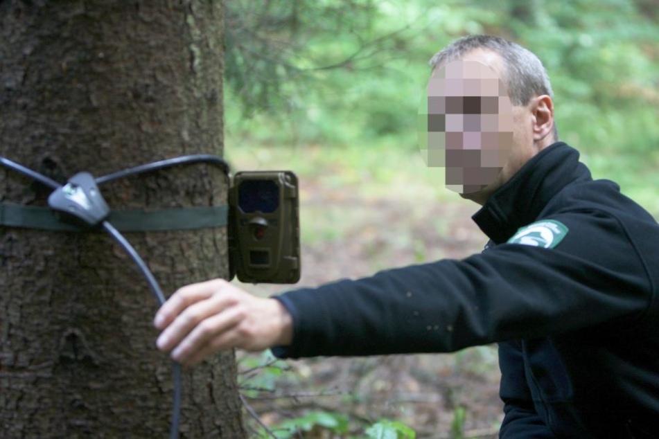 Der vermisste Matthias B. bei seiner Arbeit im Nationalparkverwaltung Sächsische Schweiz