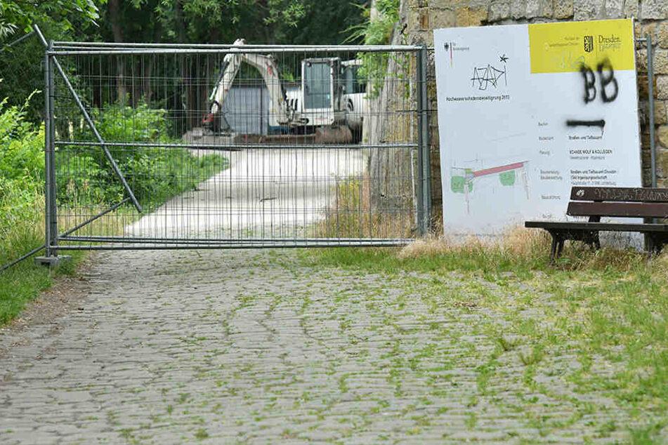 Der Elberadweg soll an dem Teilstück Jörnerweg ebenfalls saniert werden