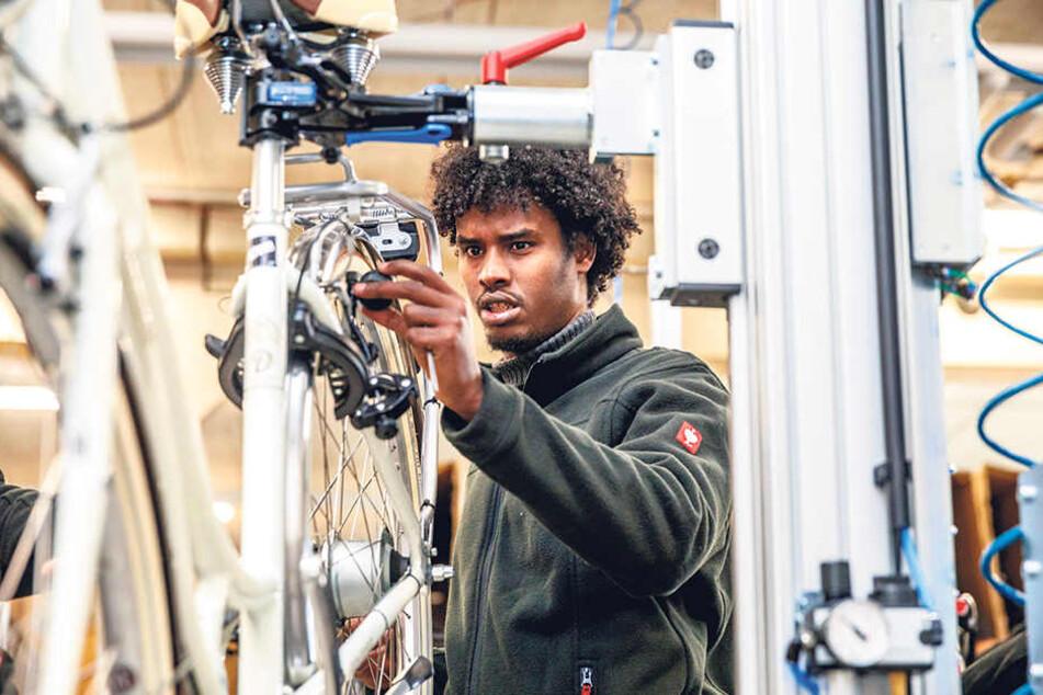 Insgesamt elf Flüchtlinge schrauben jetzt Fahrräder in Kesselsdorf, sollen nach erfolgreichem Abschluss der Schulung in Vollzeit übernommen werden.