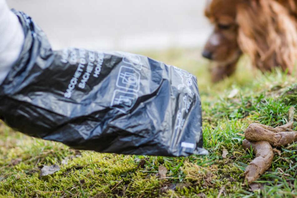 Eine Hundehalter greift mit einer Kot-Tüte nach dem Haufen seines Vierbeiners.