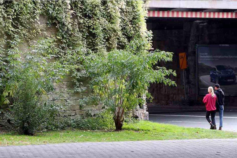 Die Tat ereignete sich in einem Gebüsch hinter der Eisenbahnbrücke.
