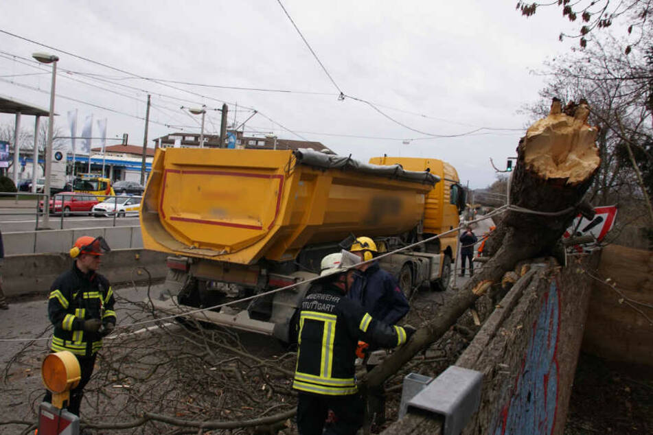 Feuerwehrleute bei den Aufräumarbeiten des abgebrochenen Asts.
