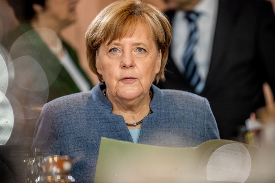 Neuwahlen für Angela Merkel kein Thema