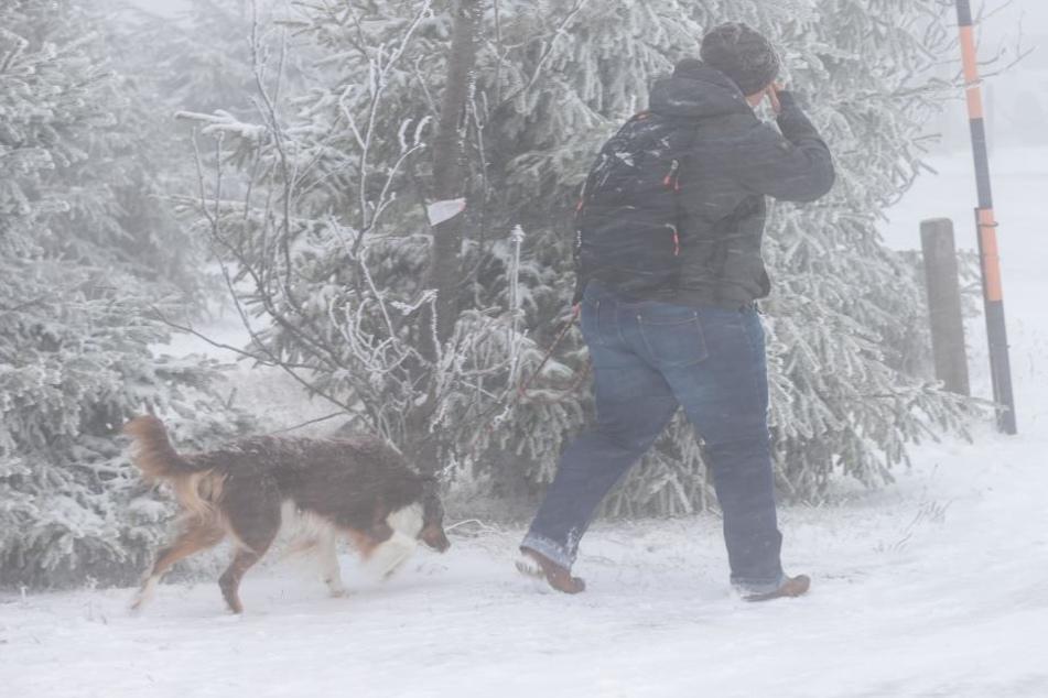 Gassigehen war im Erzgebirge am Wochenende eine Herausforderung: Zu Minusgraden und Schnee kamen auch noch Sturmböen.