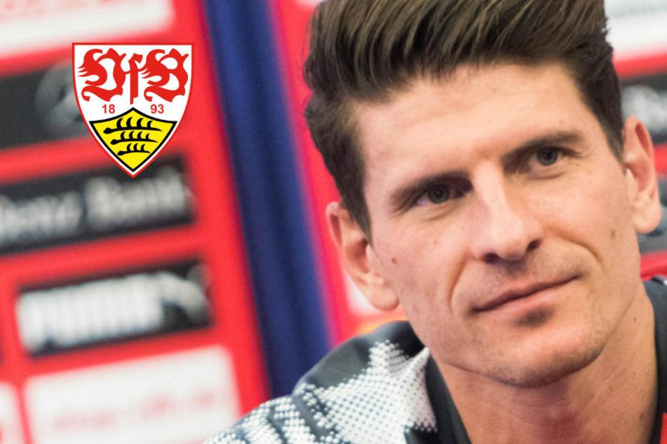 Abstiegsangst beim VfB? Darum ist Gomez vom Klassenerhalt überzeugt