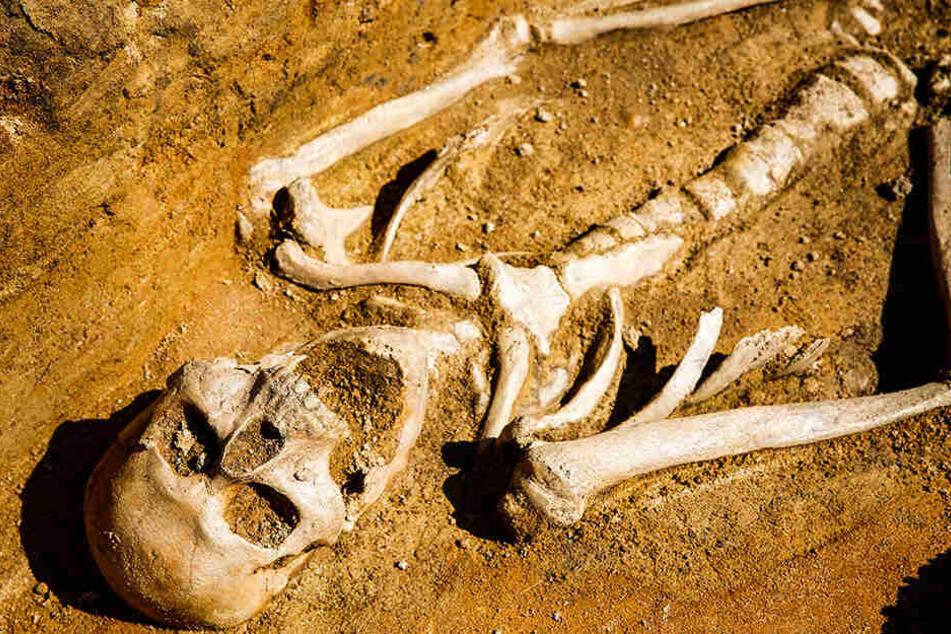 Der Fund der Skelette auf dem Vorplatz der Kirche ist keine Überraschung. Im Umkreis befand sich der Friedhof des erstmals 1119 erwähnten Klosters.