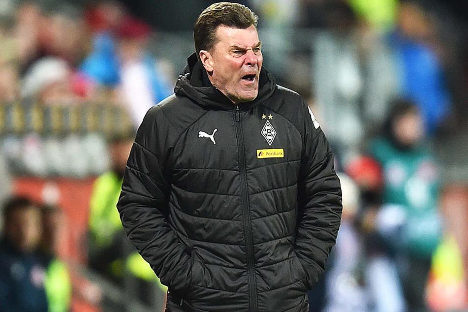 Dieter Hecking soll Schalkes Top-Kandidat bei der Suche nach einem neuen Trainer sein. Der Vertrag des 54-Jährigen läuft bei Gladbach aus und wird nicht verlängert.