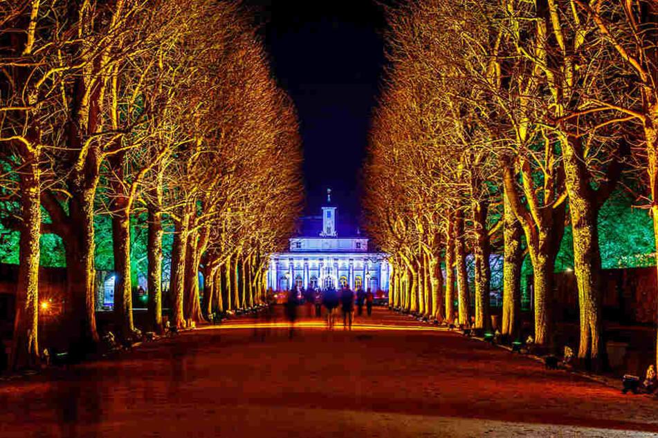 """So schön erstrahlt die Promenade im Schlosspark Pillnitz. Am Mittwoch war Generalprobe, heute ist Premiere - 19 Uhr heißt es """"Lights on!""""."""
