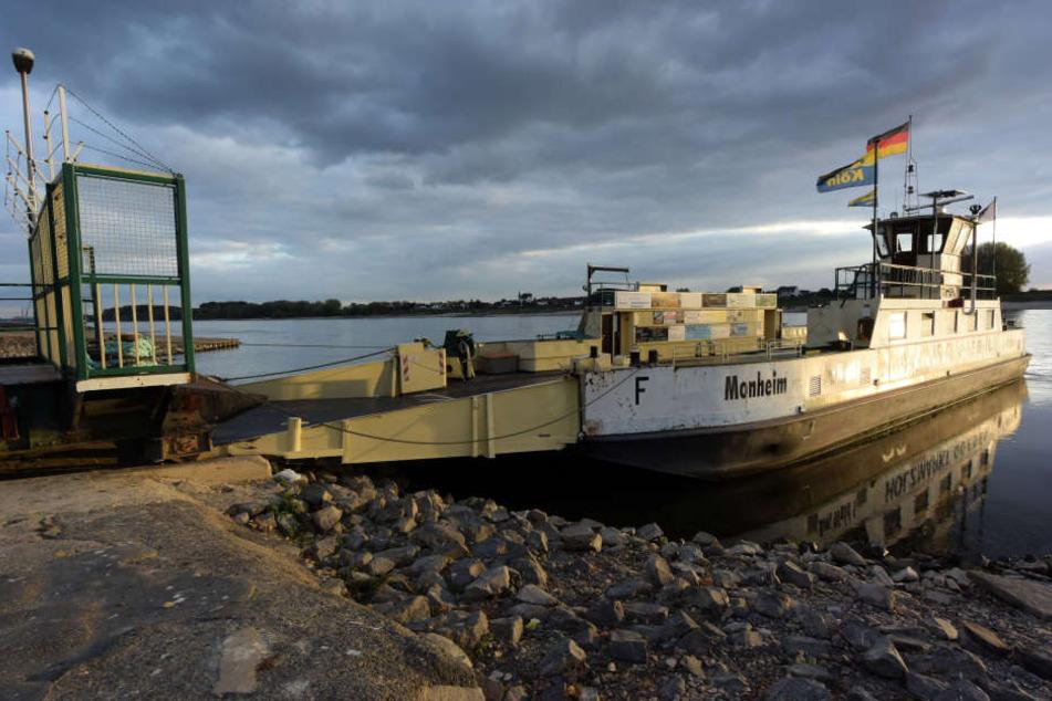 Fähren auf Rhein bei Köln und Leverkusen müssen Betrieb einstellen