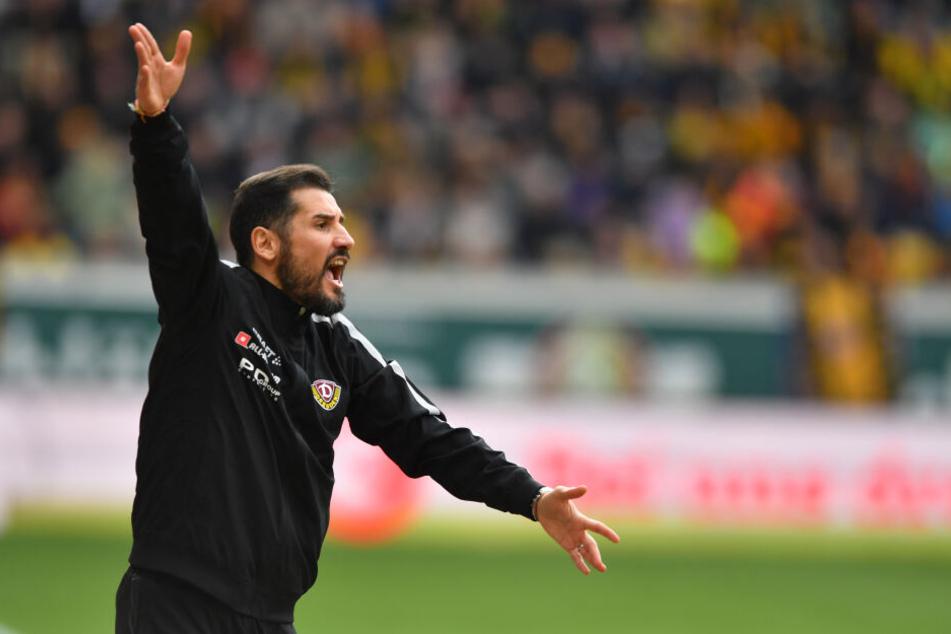 Dynamos neuer Cheftrainer Cristian Fiel dirigierte an der Seitenlinie.