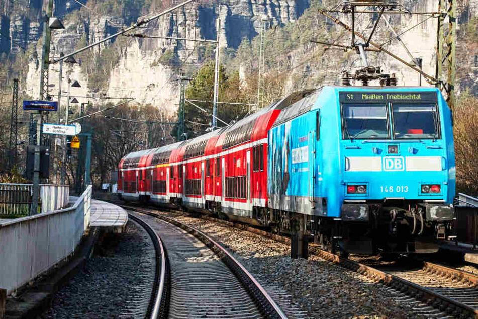 Von der S-Bahn bis zum schweren Gütertransport: Täglich poltern Hunderte Züge durchs enge Elbtal - zum Leid Tausender Anwohner.