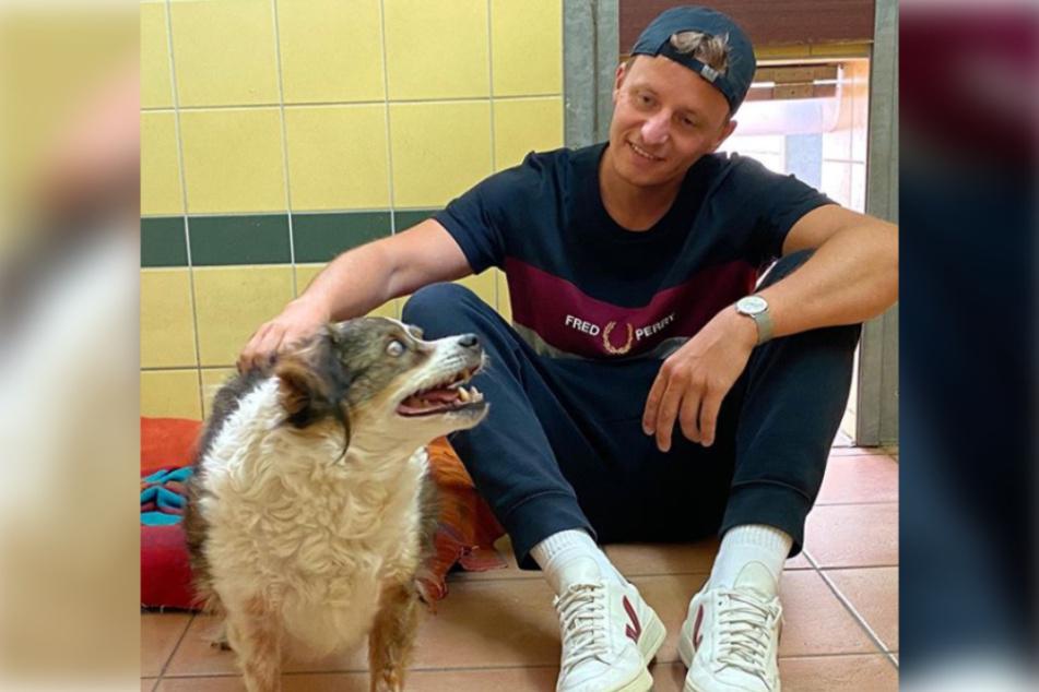 Podcast-Moderator Tommi Schmitt (31) stattete Hund Bubbles aus dem Tierheim Köln-Dellbrück einen Besuch ab.