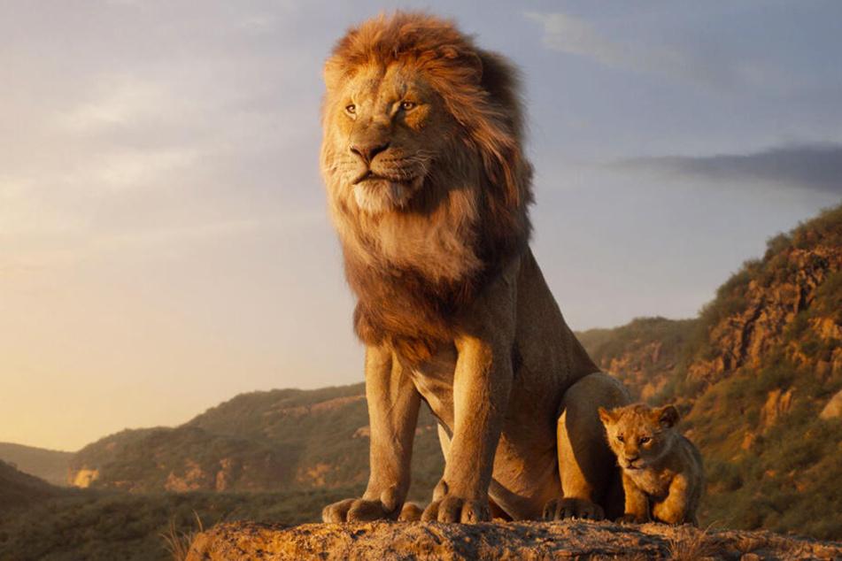 Ja, diese Löwen sind am Computer entstanden! Mufasa (l.) und der kleine Simba sehen dank modernster Technik lebensecht aus.