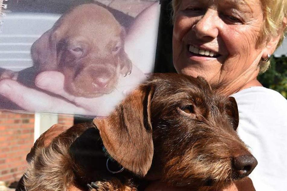 Als sie ihren Hund das letzte Mal sah, war er acht Monate alt