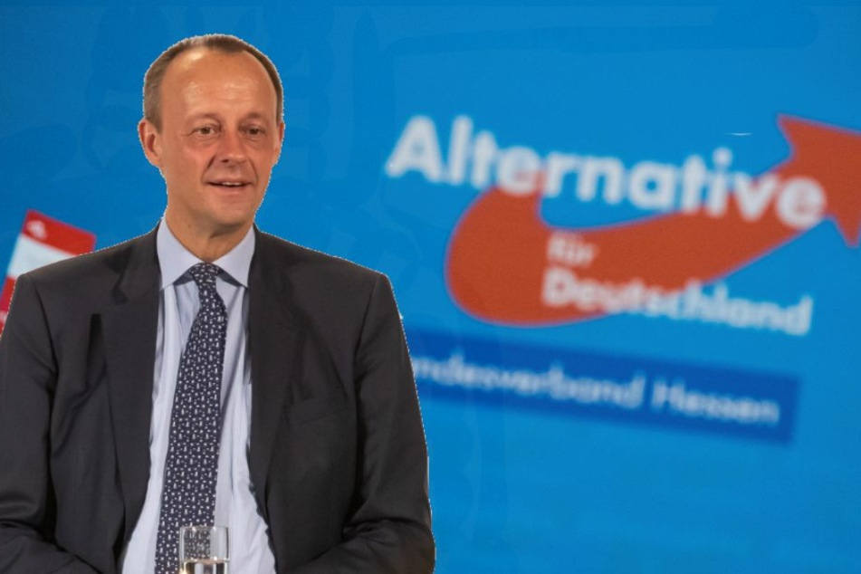 Die Asyl-Debatte von Friedrich Merz nützte statt ihm persönlich oder seiner Partei nur der AfD (Bild-Montage).