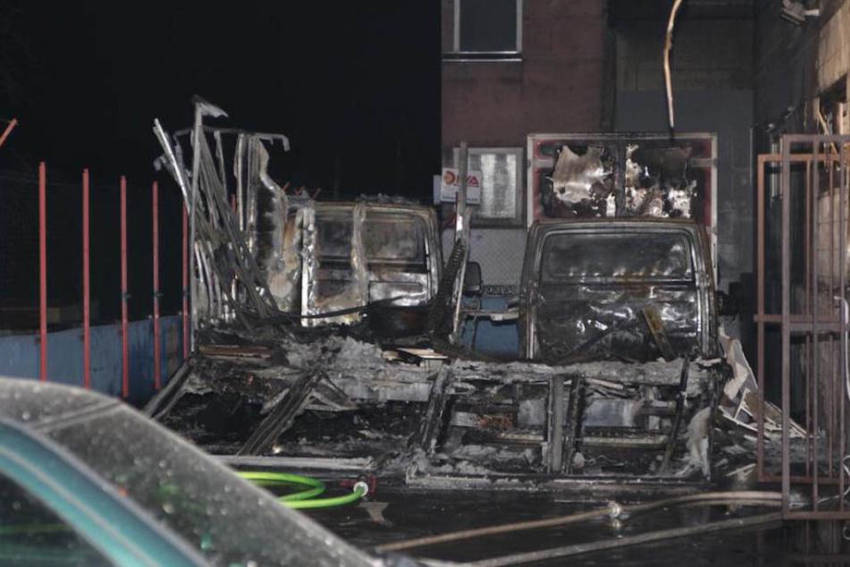 00388bbcd1e29c Die völlig zerstörten Fahrzeuge fielen vermutlich Brandstiftern zum Opfer.