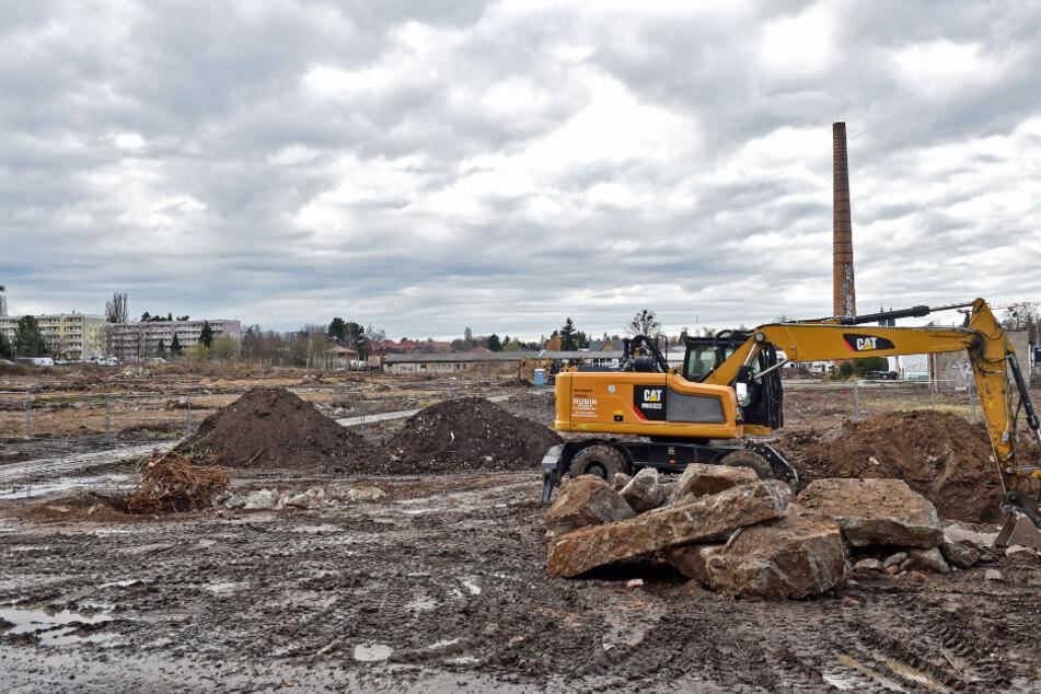 Bagger ebnen derzeit das Gelände einer ehemaligen Zierpflanzengärtnerei.