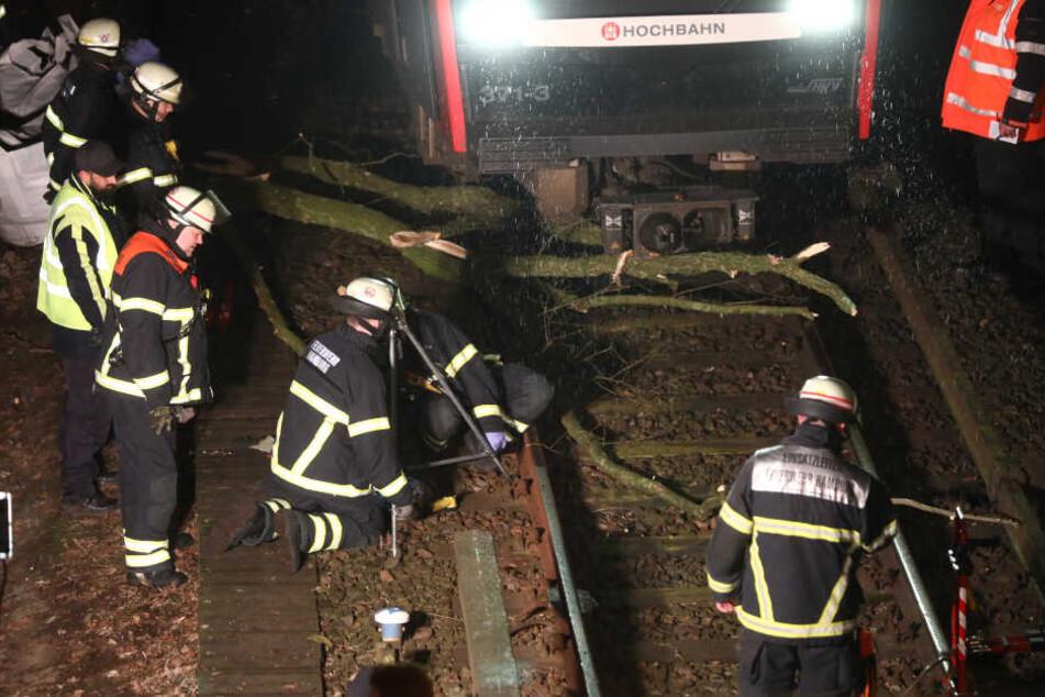 Die Feuerwehr versucht die Bahngleise von einem Ast zu befreien.