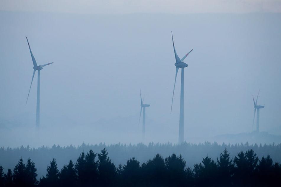 Windräder kaltgestellt: Wieso dreht sich im Freistaat Bayern nichts?
