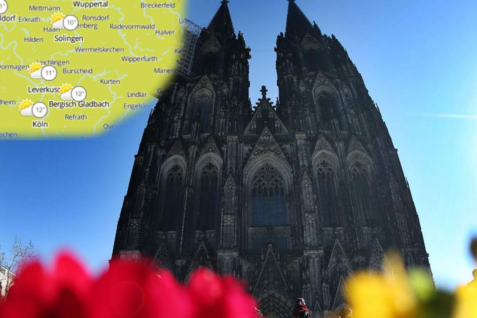 Ab Sonntag wird's in Köln richtig warm. Ob die Sonne scheint, ist noch offen. (Archivbild)