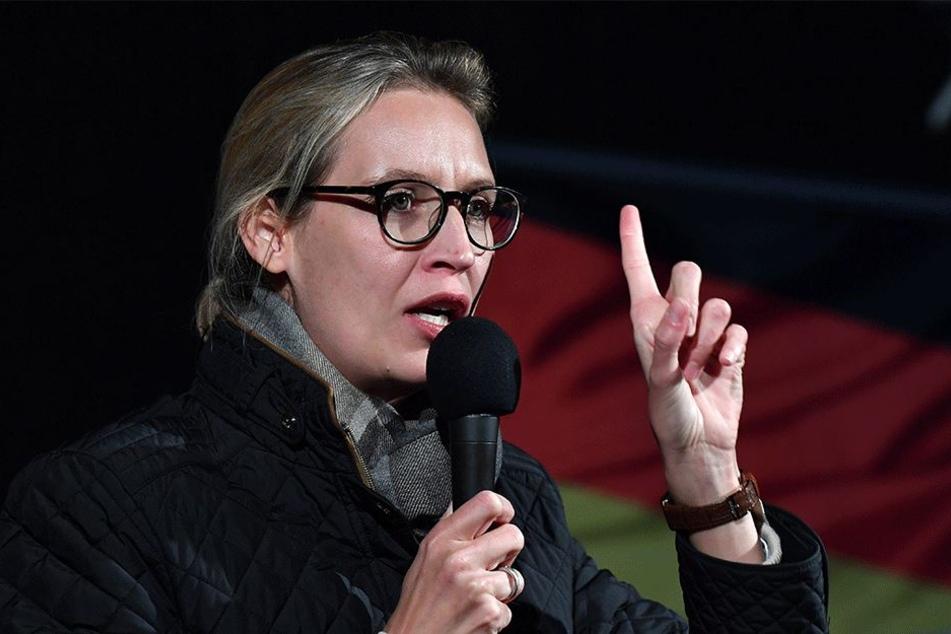 Alice Weidel (38, AfD) steht wieder mal im Mittelpunkt der medialen Aufmerksamkeit.