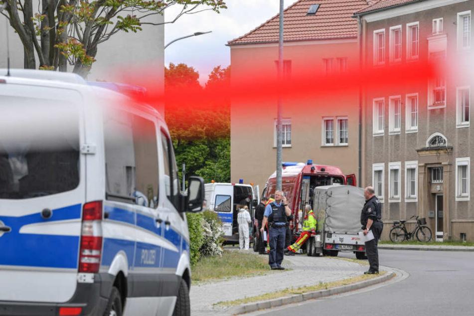 Polizeibeamte und Kriminaltechniker stehen in der gesperrten Amtstraße.